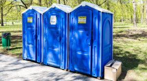 преимущества и недостатки химических туалетов